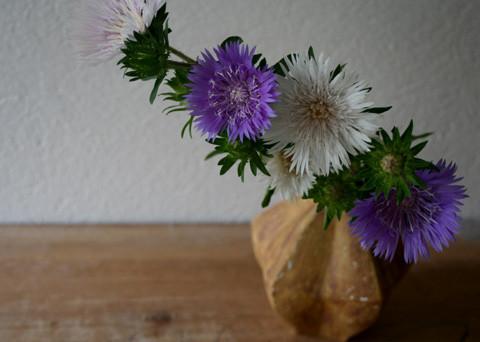 矢車菊 / 星形花入れ