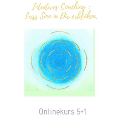 Onlinekurs 5+1
