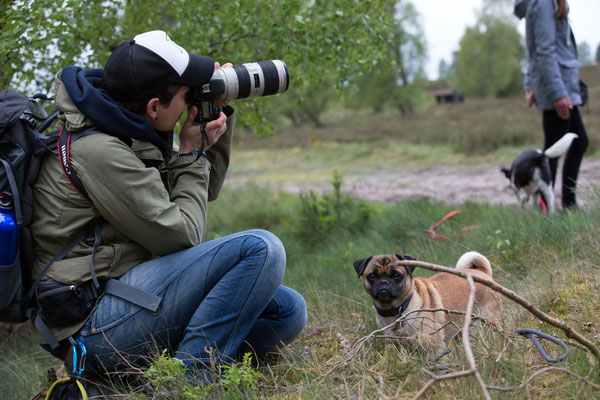 Fotografin, Hundewanderung