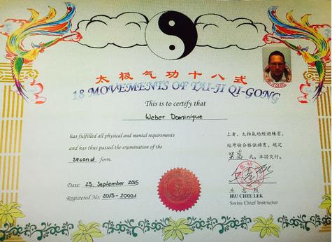 Tai Ji Qi Gong Meister Diplom