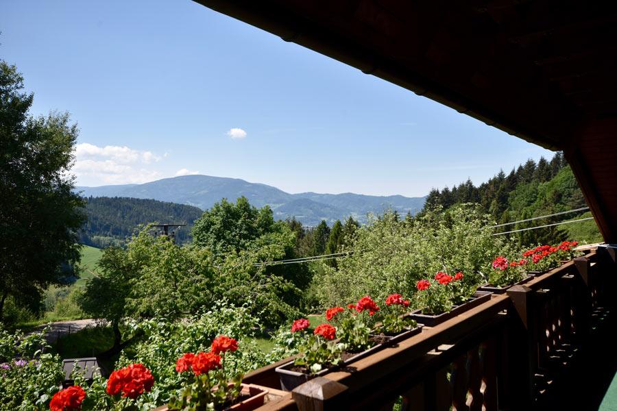 Ausblick vom Balkon, Ferienwohnung 1