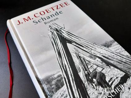 Coetzee, J.M.: Schande