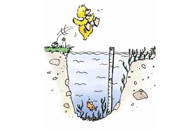 Springe nur ins Wasser, wenn es tief genug und frei ist.