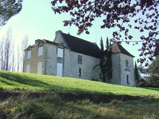 Château de l(Heyrisson - Saint Aubin de Branne