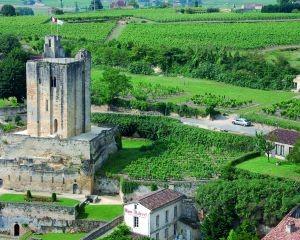 Tour du Roy et vue sur les vignes