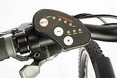 Dreirad mit Elektromotor nachrüsten Schaltung