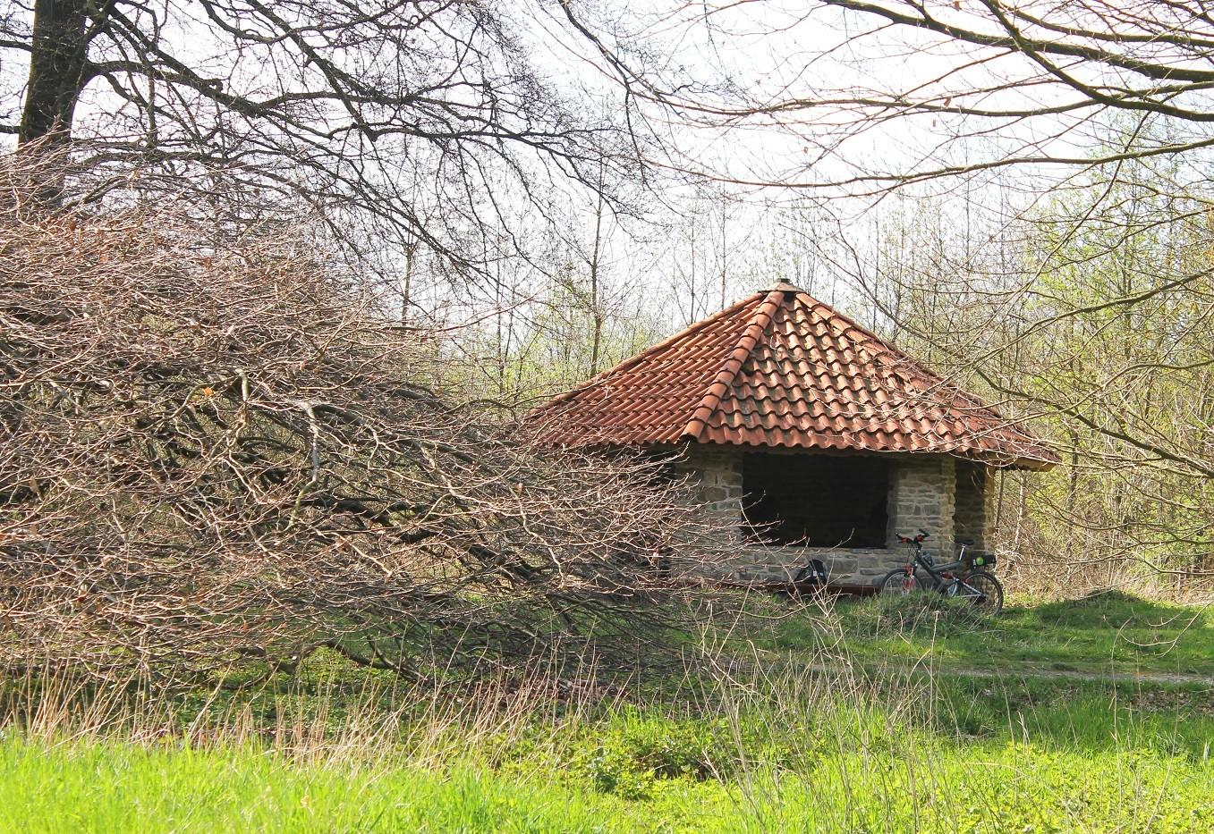 1. Rast, Dachtelfeld und Süntelbuchen