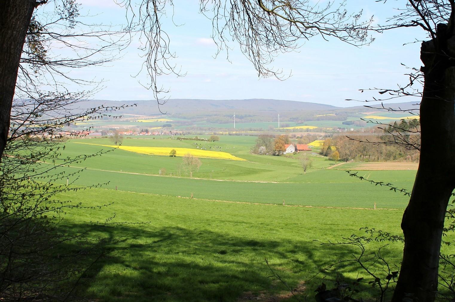 Blick durchs Tal auf den Deister