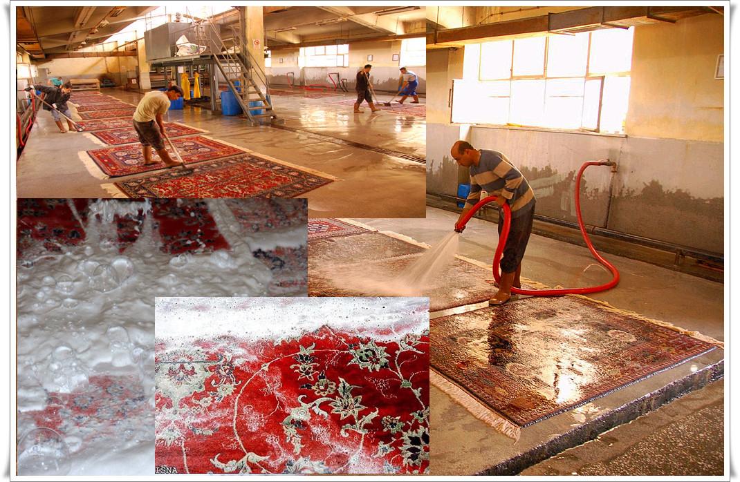Hochwertige Bio Teppichreinigung Fulda und