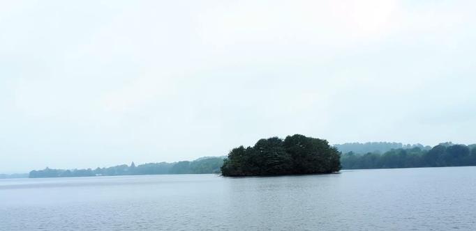 Insel im Dieksee noch im Nebel