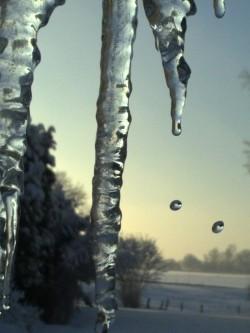 es wird nicht ewig Winter bleiben...
