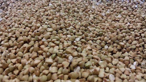 graine de sarrasin producteur bio dauphiné