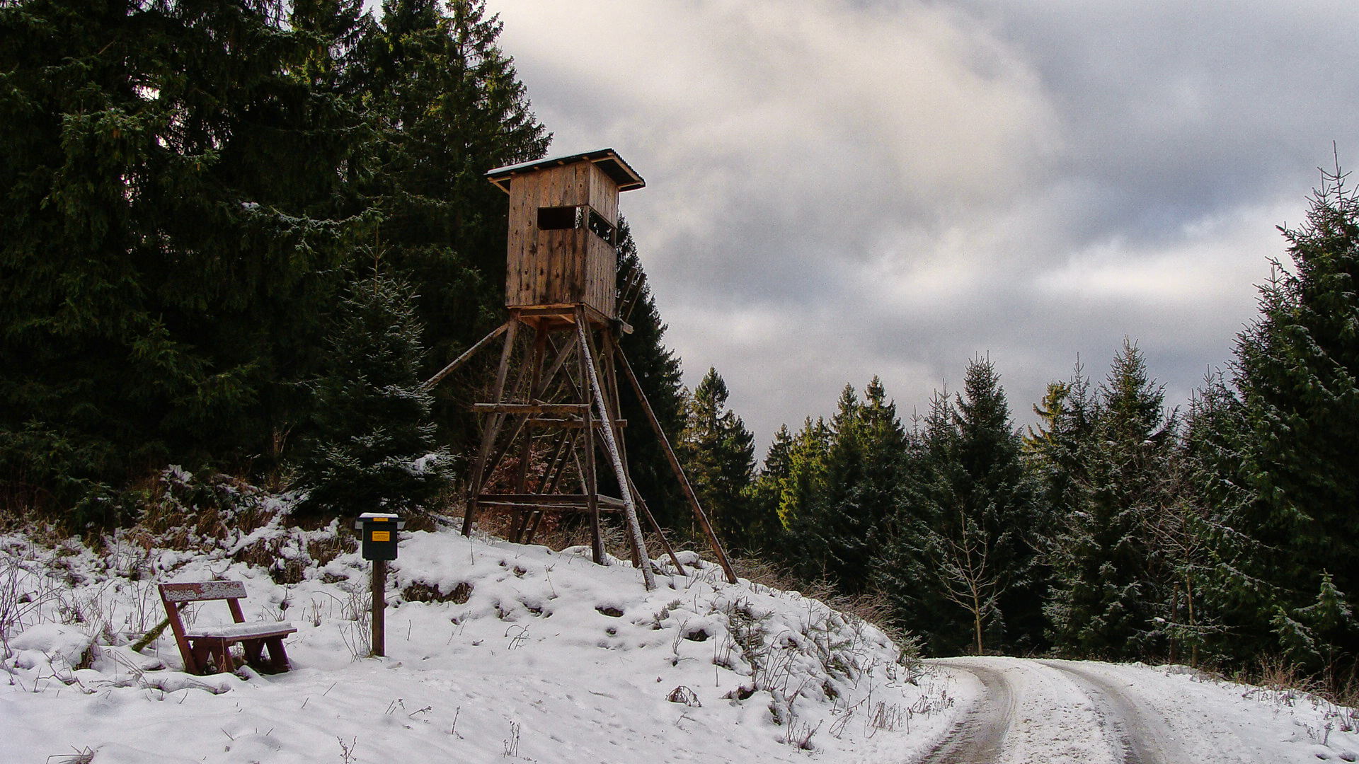 HWN 047 Oberharzblick Buchenberg