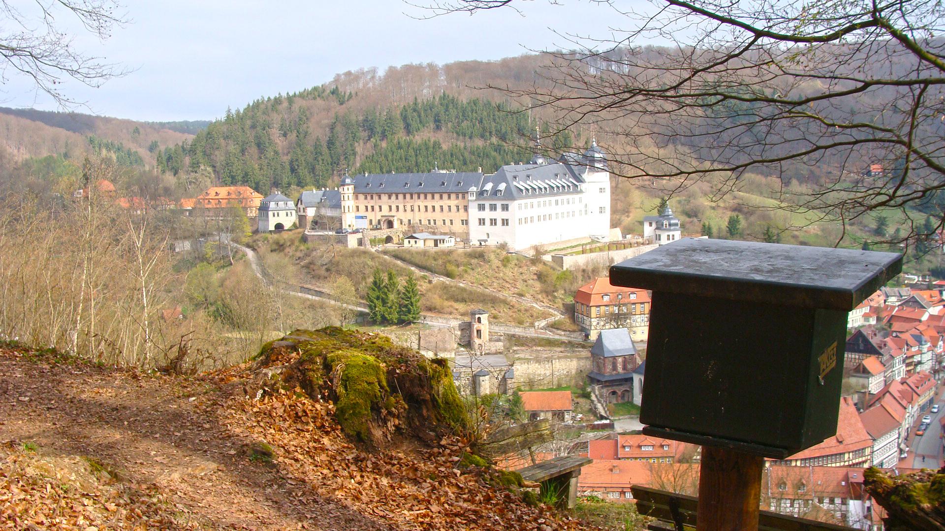 HWN Lutherbuche Stolberg