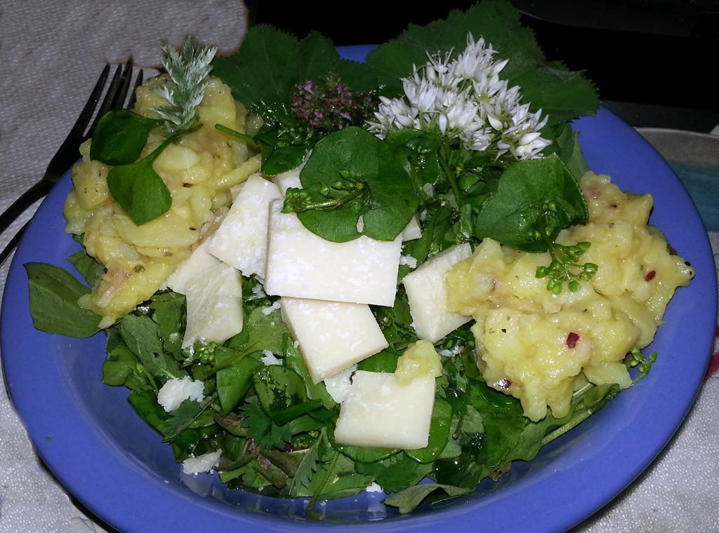 Kartoffelsalat Kubaspinat Taubnessel Bärlauchblüten u. Parmesello
