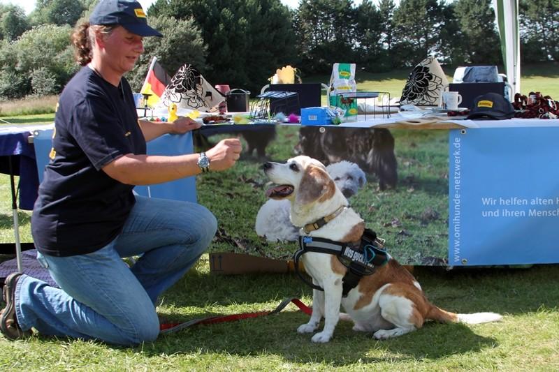 Lucky wurde uns Anfang 2011 gemeldet und zog Ende Juli in eine Pflegefamilie.