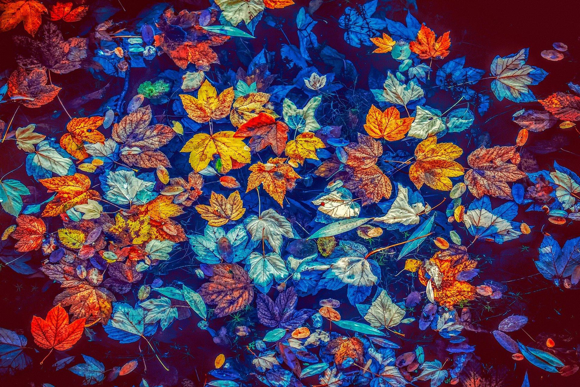 Herbstfest, Haustblót