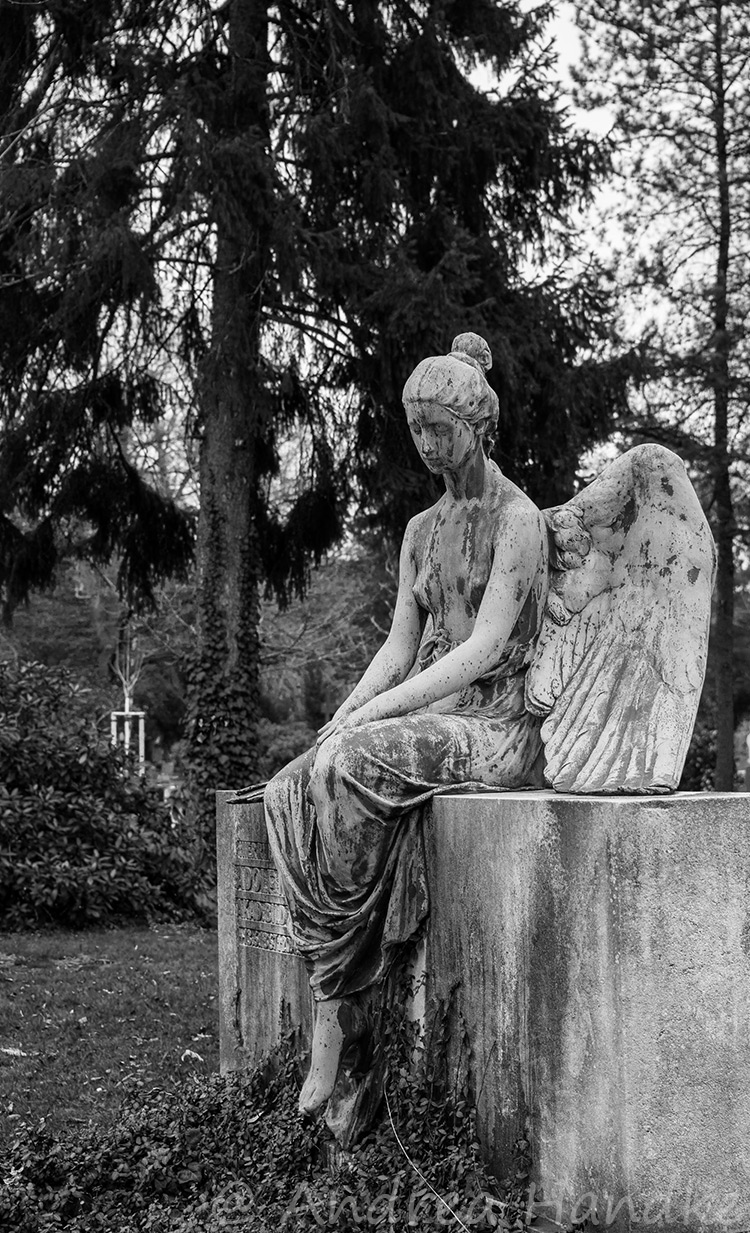 Dresden, Johannisfriedhof