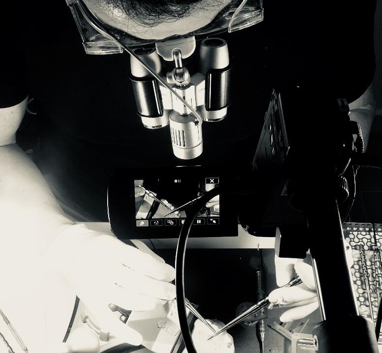 bruno negri dental training center, bruno negri, cirugia bruno negri, clinica dental alicante, formacion tejidos blandos, formacion zimmer biomet, zimmer biomet, manejo de tejidos blandos, dentista pilar de la horadada, implantes murcia, sepa, bruno negri