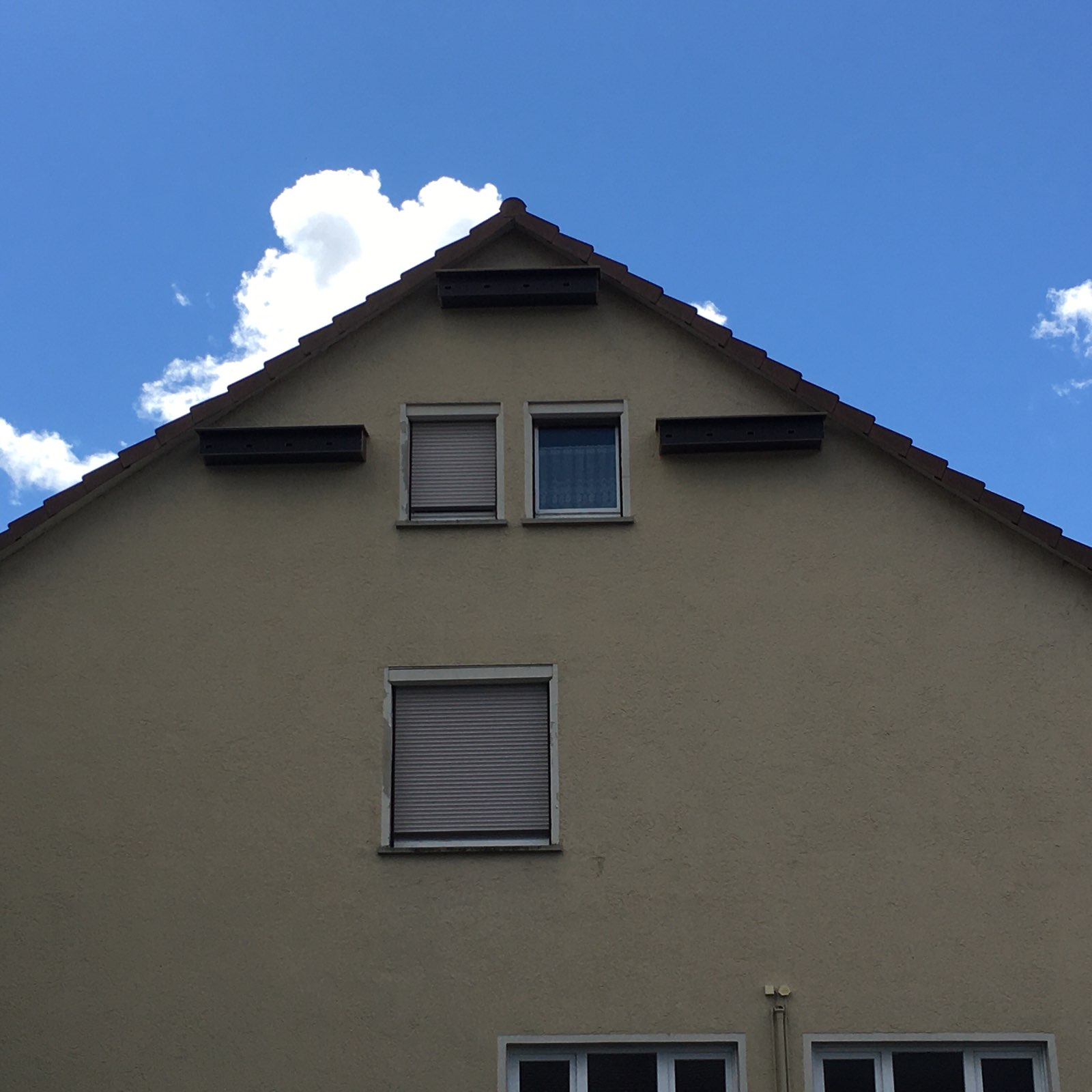 "Kommunale Servicebetriebe Tübingen, Bauhof ""im Täle"" / Elisabeth Bark"