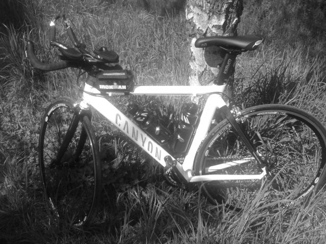 Don's Triathlon Bike