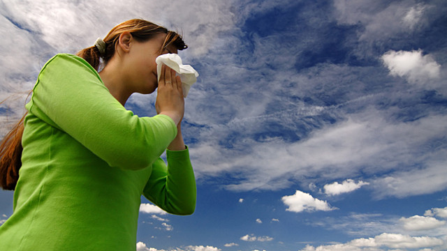 Zink bei Erkältung / Nahrungsergänzung / Tipps