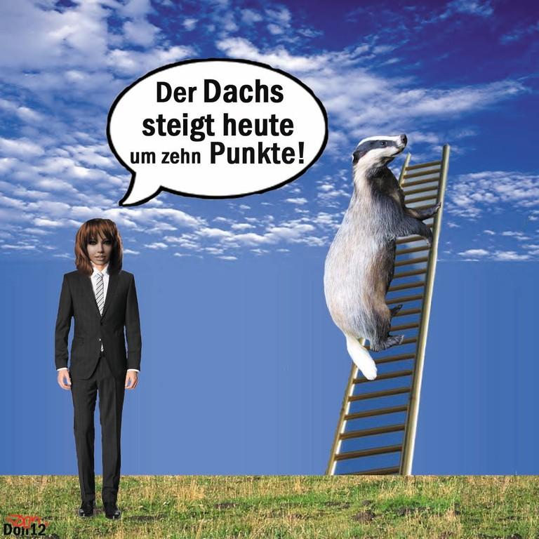 Der Dachs steigt heute um zehn Punkte - by Don2012