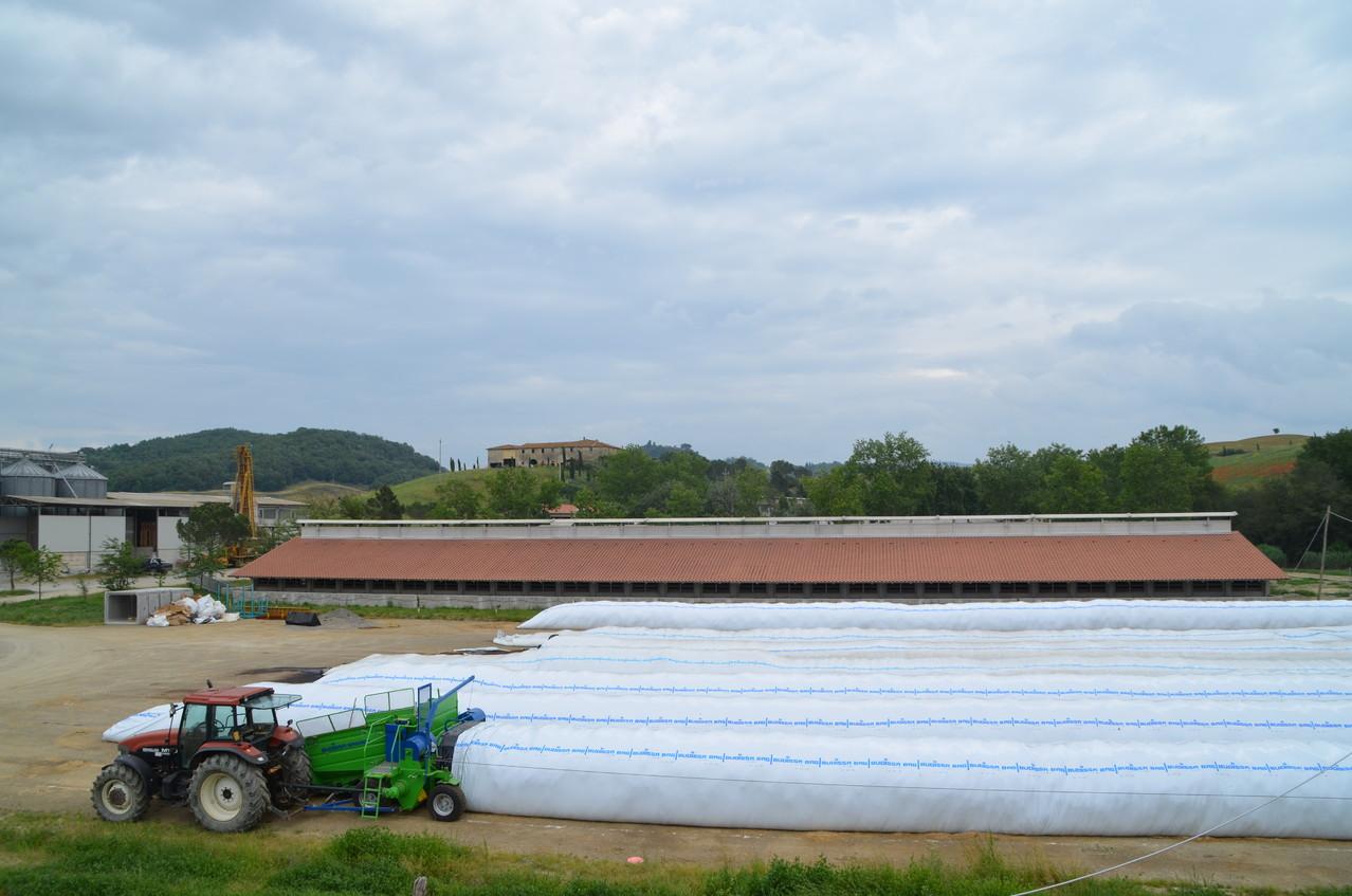 Stoccaggio delle colture energetiche nei silobag