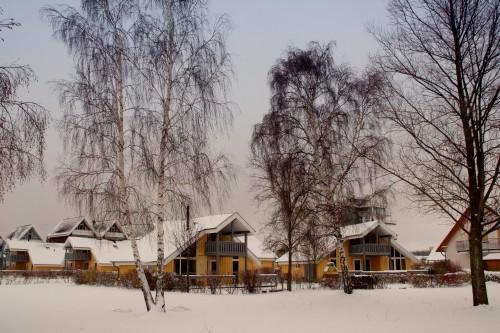 Winter im  Ferienpark Müritz