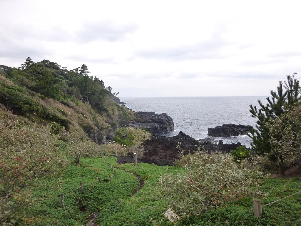 素敵な海岸沿いの遊歩道も走ります