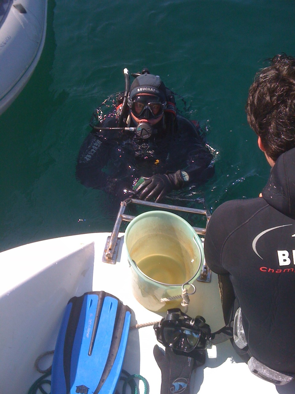 Plonger dans l'Atlantique à Belle-Ile