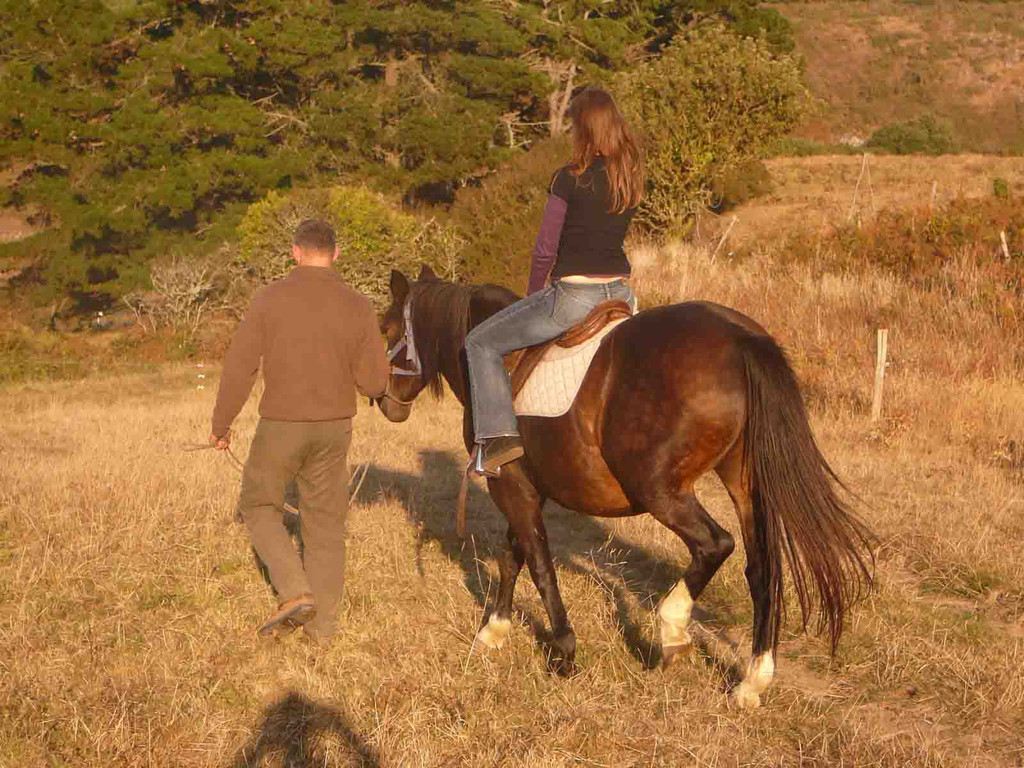 Gite Belle Ile en Mer - A cheval dans un vallon