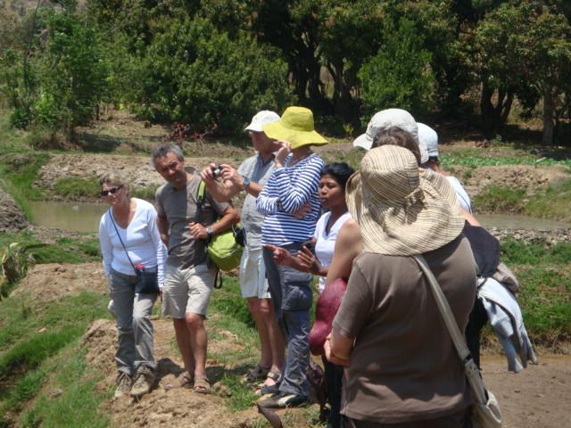 découverte de terres agricoles