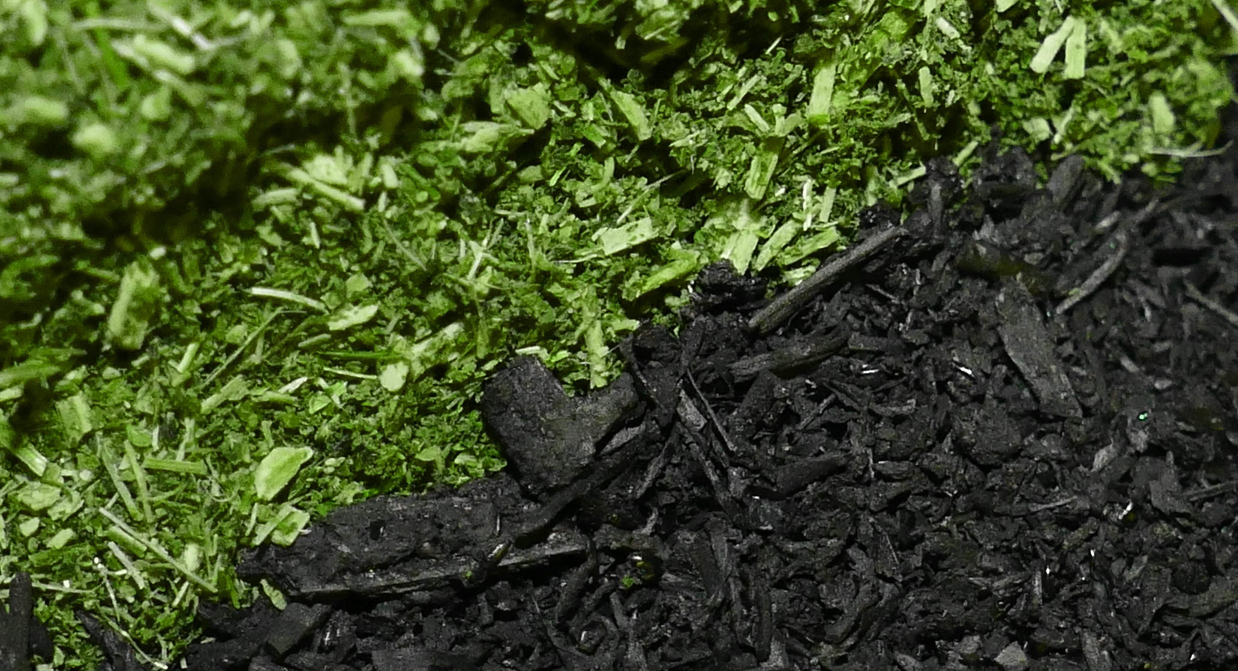 ber uns herbacarbo pflanzen und futterkohle. Black Bedroom Furniture Sets. Home Design Ideas