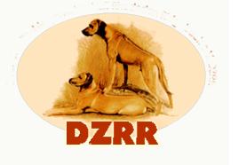 https://www.dzrr.de/