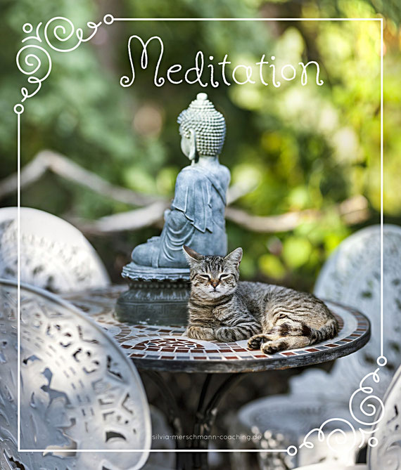 Kleine Buddha Statue und Katze. Bild mit Text.