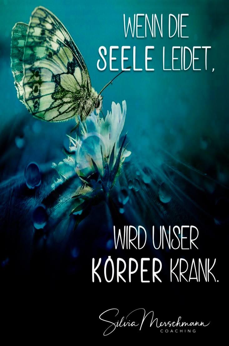 Schmetterling auf einer Blüte. Bild mit Text.