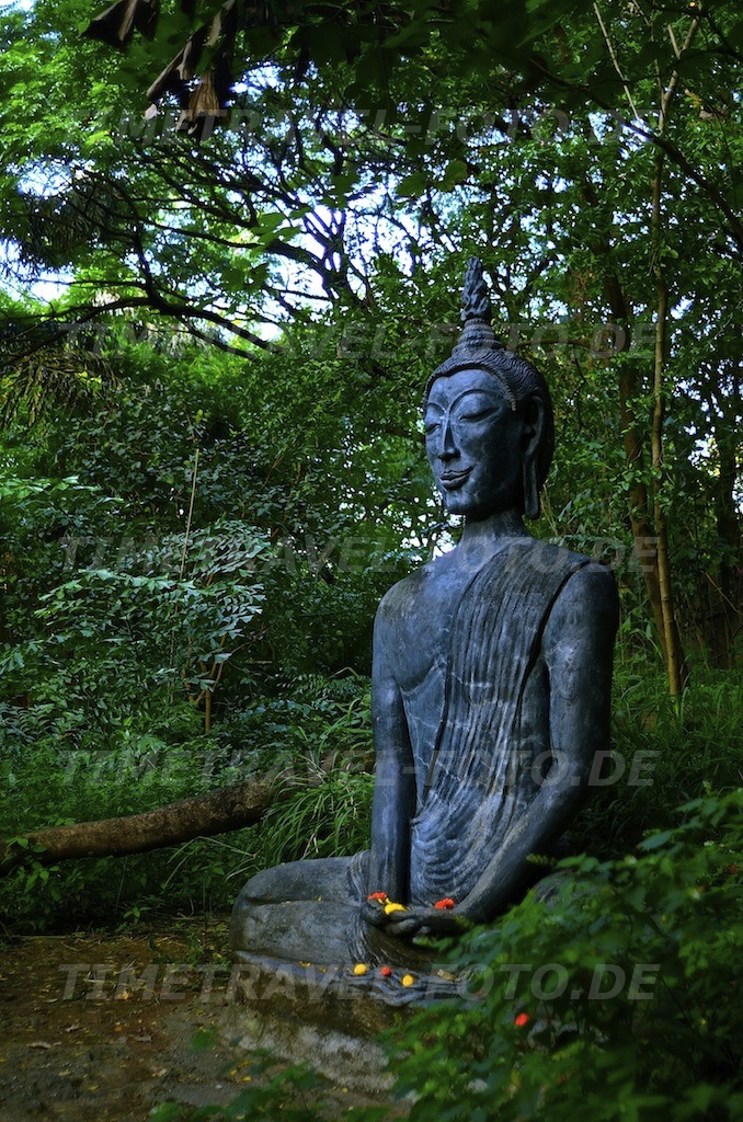 Buddha. Foto: Esther Knipschild