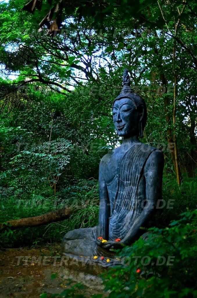 Buddha. Foto: E. Knipschild