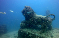 Gedenkstätten auf dem Meeresgrund: Das Neptune Memorial Reef, Miami, Florida/USA