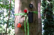 Waldbestattung (Teil 2): Der Begräbniswald als Teil eines bestehenden Kirchhofs/Friedhofs