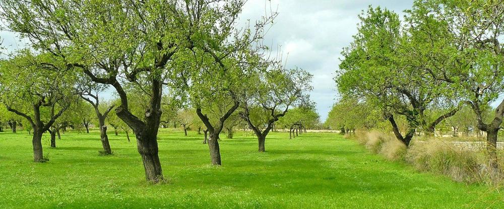 Paarberatung Leinfelden-Echterdingen, Paarberatung Stuttgart, Familienberatung Leinfelden-Echterdingen, Familienberatung stuttgart, Liljana Hartding