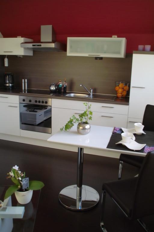 neue, moderne EInbauküche in weiß, komplette Wohnung Allergiker geeignet