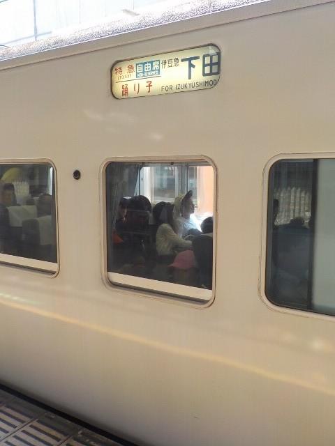 新宿から伊豆へ 旅路は長いが、車窓の外は段々と都会を離れ、ワクワク感が高揚!