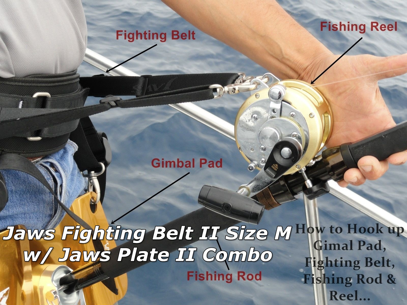 Flighting Belt Size M with Gimbal Pad II