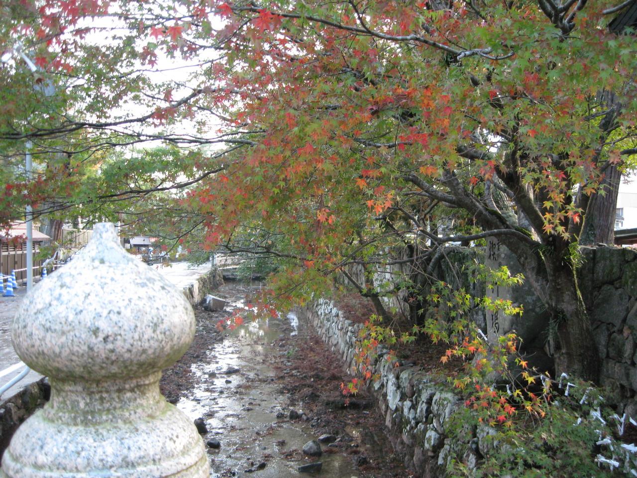 ❦ 秋の紅葉