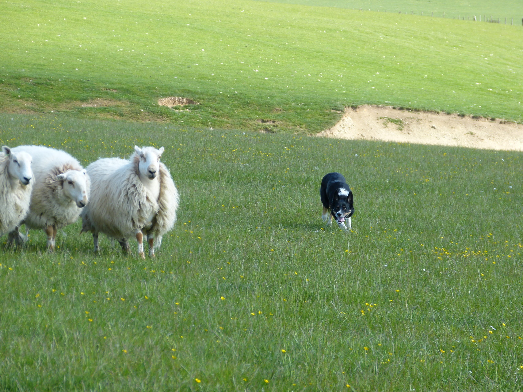 (Hüte-)Urlaub in Wales bei Alun Jones / 14.-24.06.15