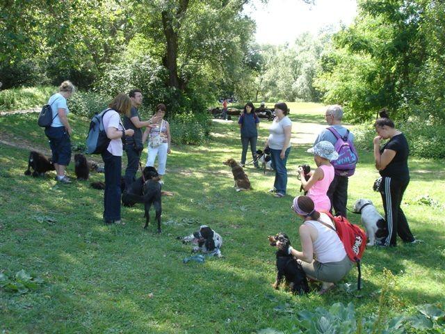 Les maitres écoutent les conseils de Florent de Canissimo, éducateur canin