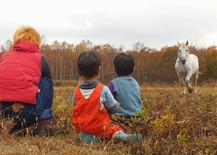 秋の体験プログラム 収穫体験