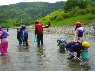 川はやっぱり魚屋昆虫など、生き物探しがたのしいですね。
